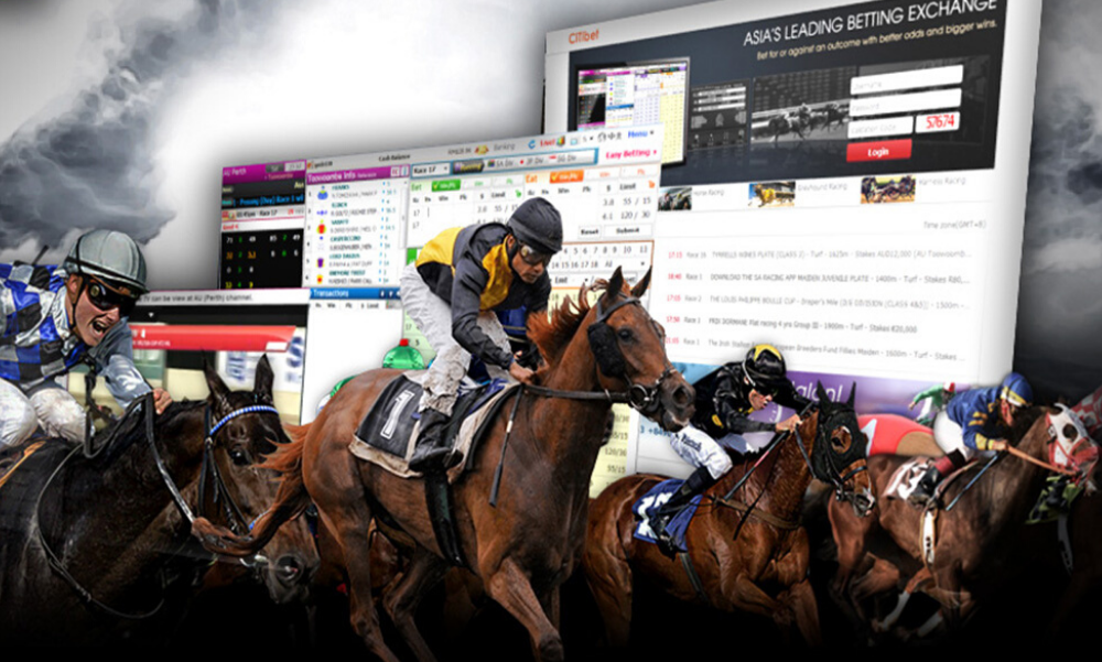 Online horse betting legal in us jednostki informacji bitcoins